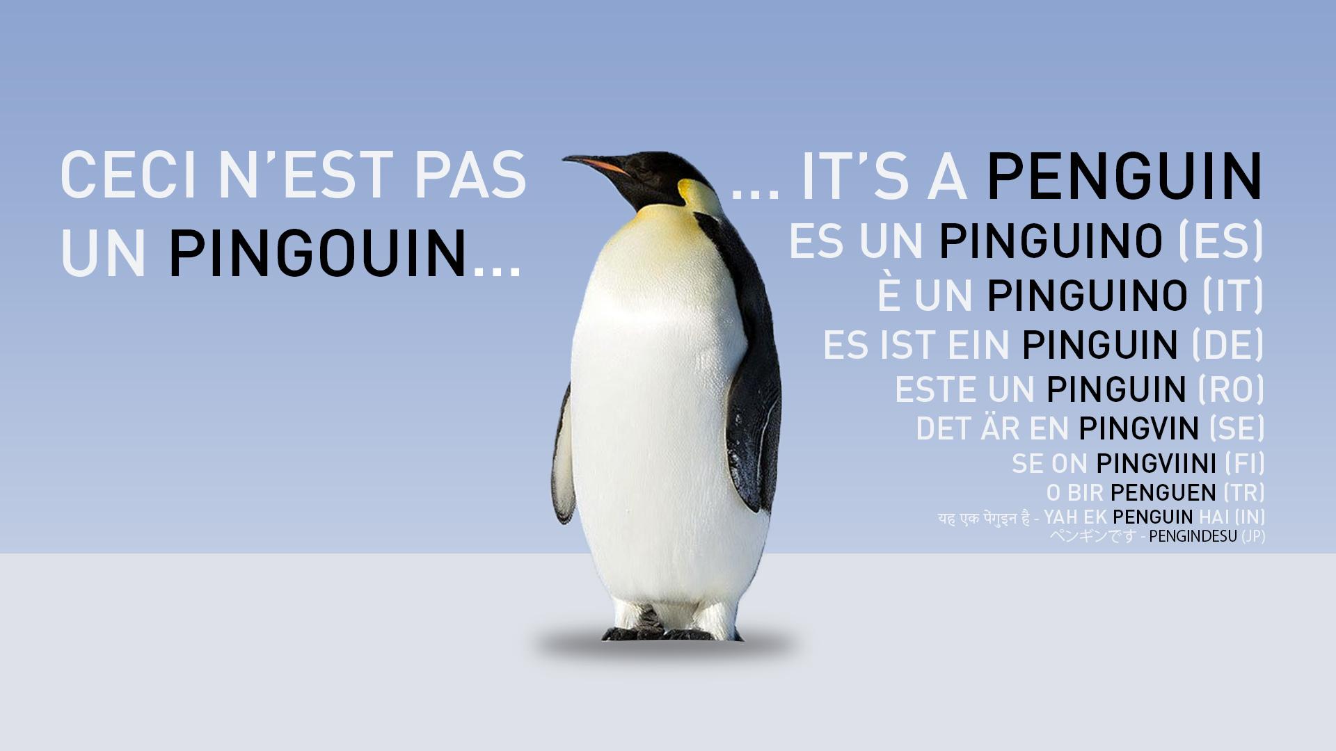 Pingouin et manchot, c'est pareil ?