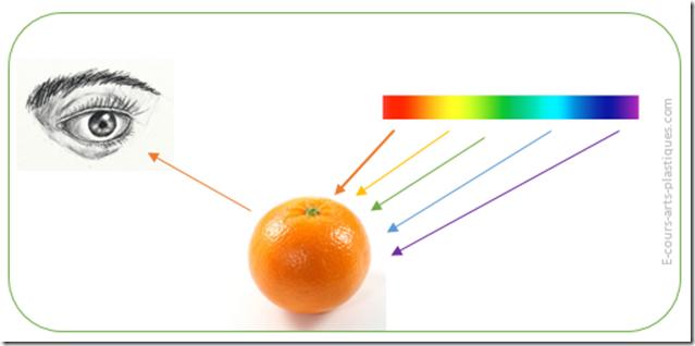 Comment on perçoit les couleurs ?